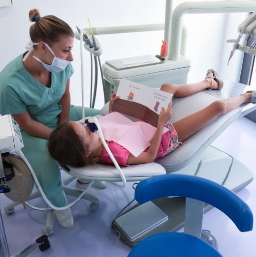 News | Regno Dei Dentini